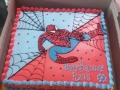 Spiderman Cake 2